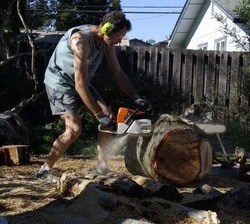 Scott Clark using a chain saw to cut log